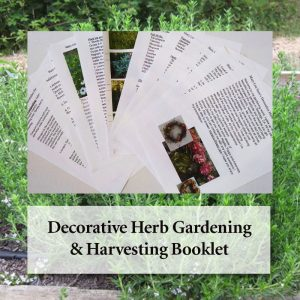 Mary Lou Saso's Decorative Herb Gardening & Harvest