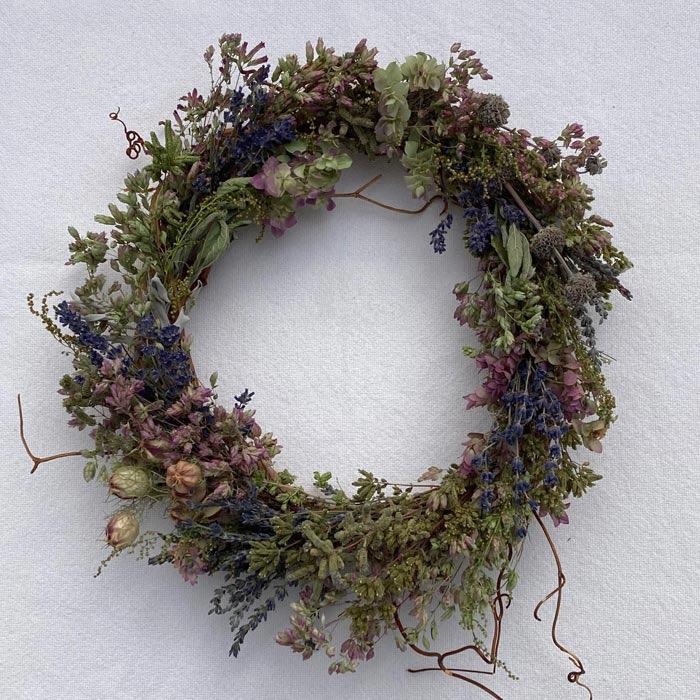 Ornamental Oregano, culinary oregano, lavender herbs